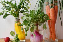 Fresh Produce / by Marliane Reeves