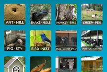 animals place vocabulary
