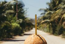 Timor Travel Lookbook / Exploring Timor-Leste with our Pacific Gold Straws