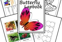 caterpillar study unit
