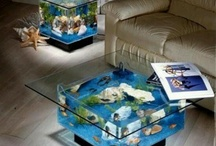 Aquarium ideas