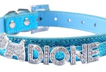 Rhinestone collars and accessories