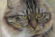 고양이그림