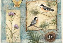 Dekupaj kuşlar