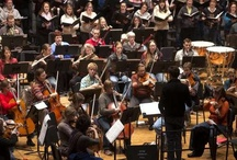 St. Cloud Symphony Orchestra / by St. Cloud Times newspaper/online