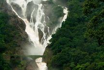 Visit Goa