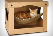 casinha pra gato