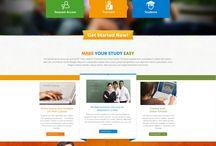 WordPress Development / WordPress Development