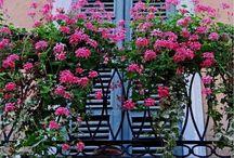 Balcony Inspirtion