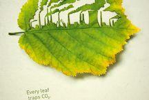 Ecological lifestyle