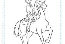 Birthday: Spirit Riding Free - Horses