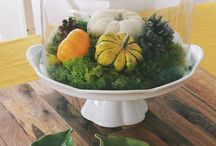Halloween / Easy ideas for bring Halloween into your home decor / by Rosanna Inc.