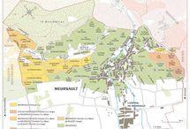 Meursault : In A Class Above
