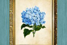 Prensado de flores y follaje