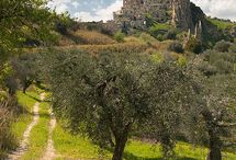 Basilicata - also know as Lucania