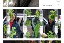 """How does your Garden grow / For all of the """"green Thumbs"""" out there.."""