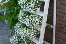 leuk voor bloemen op te zetten in de tuin