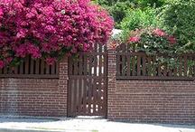 Garten : Zaun