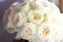 Wedding flowers / by Kelsee Torrez