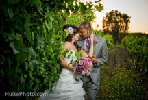 Winery Weddings / Winery Weddings: Unforgettable sunsets, starlit skies,vineyards with magnificent lawns and vine covered arbors for your perfect backdrop. Make your day romantic by creating your wedding at a winery.