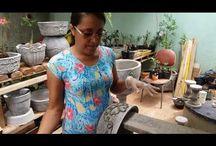 vaso de cimento plantas