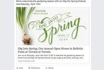VIP April/Spring ideas