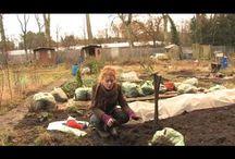 Alyds Fowler gardening
