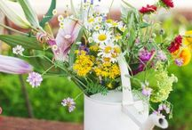 Garden: Every Bloomin' Thing! / Flowers