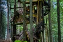 Favorite Places & Spaces / by Krista Swetz