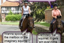 Horsey Humor / All of us at Classic Equine Equipment love #Equestrian #Humor so here we share some of our favorite #jokes.  http://www.classic-equine.com/