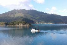 Nieuw-Zeeland met kinderen / Blogs over onze reis door Nieuw-Zeeland