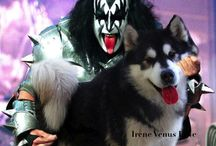 Rockers and their pets..