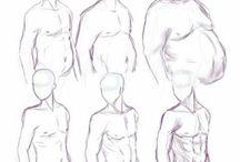 Body (male)