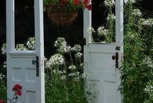 Trädgård / garden