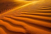 Пустыня, верблюды