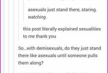 Sexualities explained