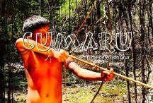 Núcleo de cinema Amazônico - Amazon sat / Vídeos do 1o. Concurso de Roteiros Amazon sat