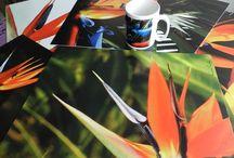 Individuales / Bellos individuales con fotografías de naturaleza, flora, follajes, en series temáticas. Rectangulares o cuadrados.