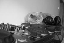 Luna british cat