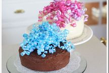 Decorating Cakes,Cupcakes / by Barbara Lundquist