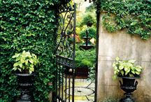 Garden Ideas / by Ann VanCleave Shearon