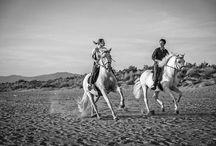 horse-back engagement in Tuscany