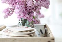 Lilac (сирень) / сирень...ммм... самые любимые и ароматные цветы
