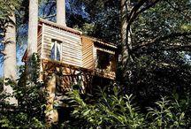 Au Fil de Soi, la cabane / une magnifique cabane nichée dans un bosquet d'arbres