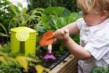 Kids Gardening Activity