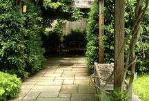 My Secret Garden / by Missy Larson-Sarginson
