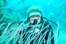 Oceans Diving (Ayhan Kaptan) / Su altı araştırma ve dalış eğitimi