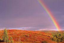 Seasons / by Jonny Ross