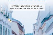 Viena winter 2017