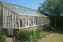 Green House + Potting Shed
